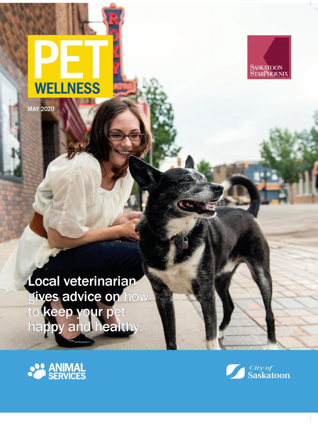 Sp Pet Wellness 2020 By Postmedia Saskatchewan Issuu