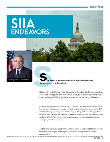 Page 45 of SIIA ENDEAVORS