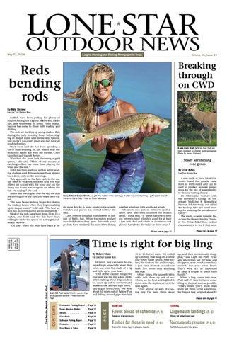 """10 Soft Plastic Lure Wacky Worm Catfish Salmon Bass Drop Shot Bait 5.5/"""" Clear"""