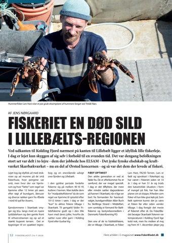 Page 12 of FISKERIET EN DØD SILD I LILLEBÆLTS-REGIONEN
