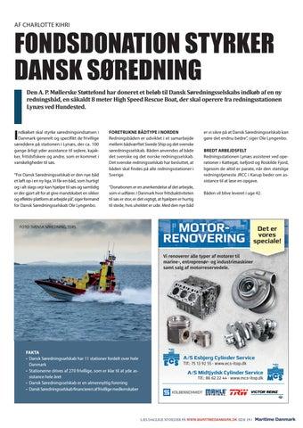 Page 19 of FONDSDONATION STYRKER DANSK SØREDNING
