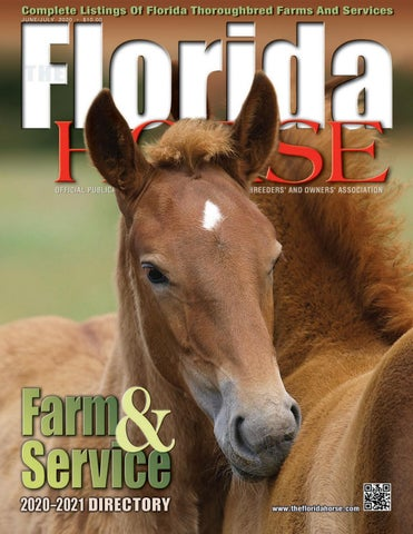 Florida Horse 2020 Farm And Service Directory By Florida Equine Publications Issuu