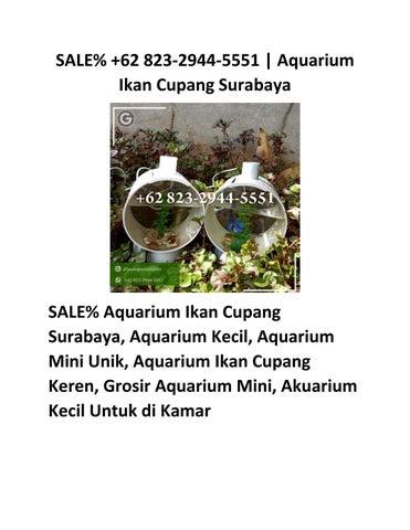 62 823 2944 5551 Aquarium Mini Unik Issuu