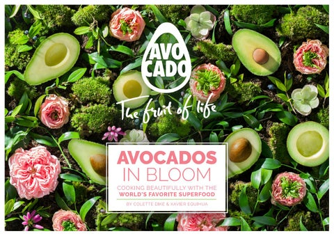 Avocados in Bloom by World Avocado Organization - issuu