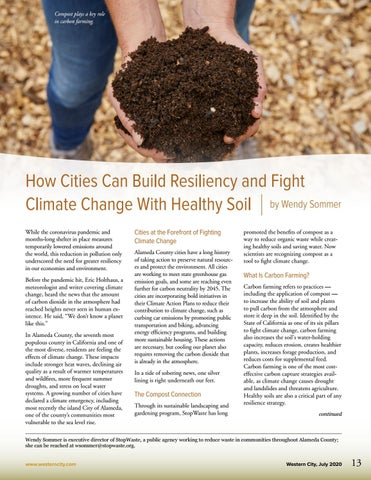 Page 15 of How Cities Can Build Resiliency and Fight Climate Change With Healthy Soil