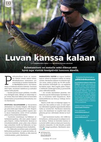 Page 38 of Luvan kanssa kalaan