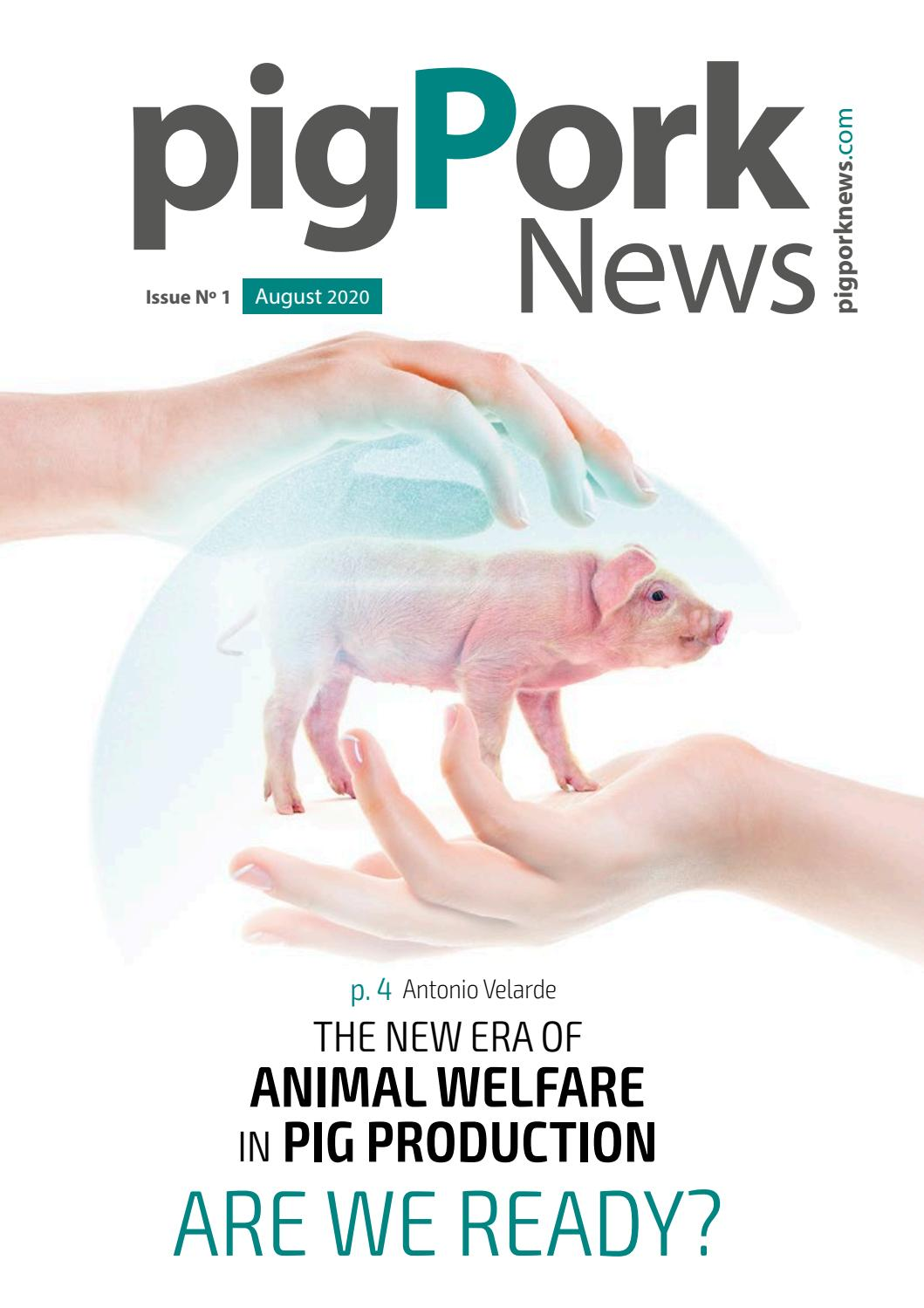 pigPorknews August 21 by agrinews   issuu