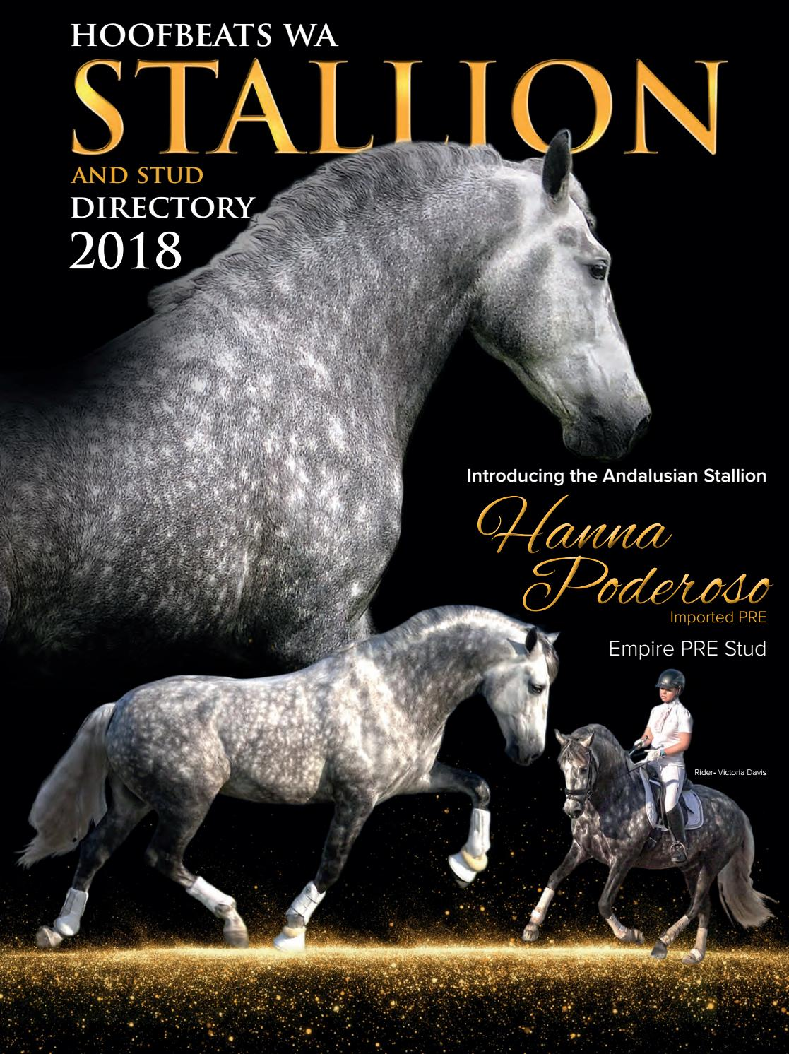 Hoofbeats Stallion Directory 2018 By Hoofbeat Publications Issuu