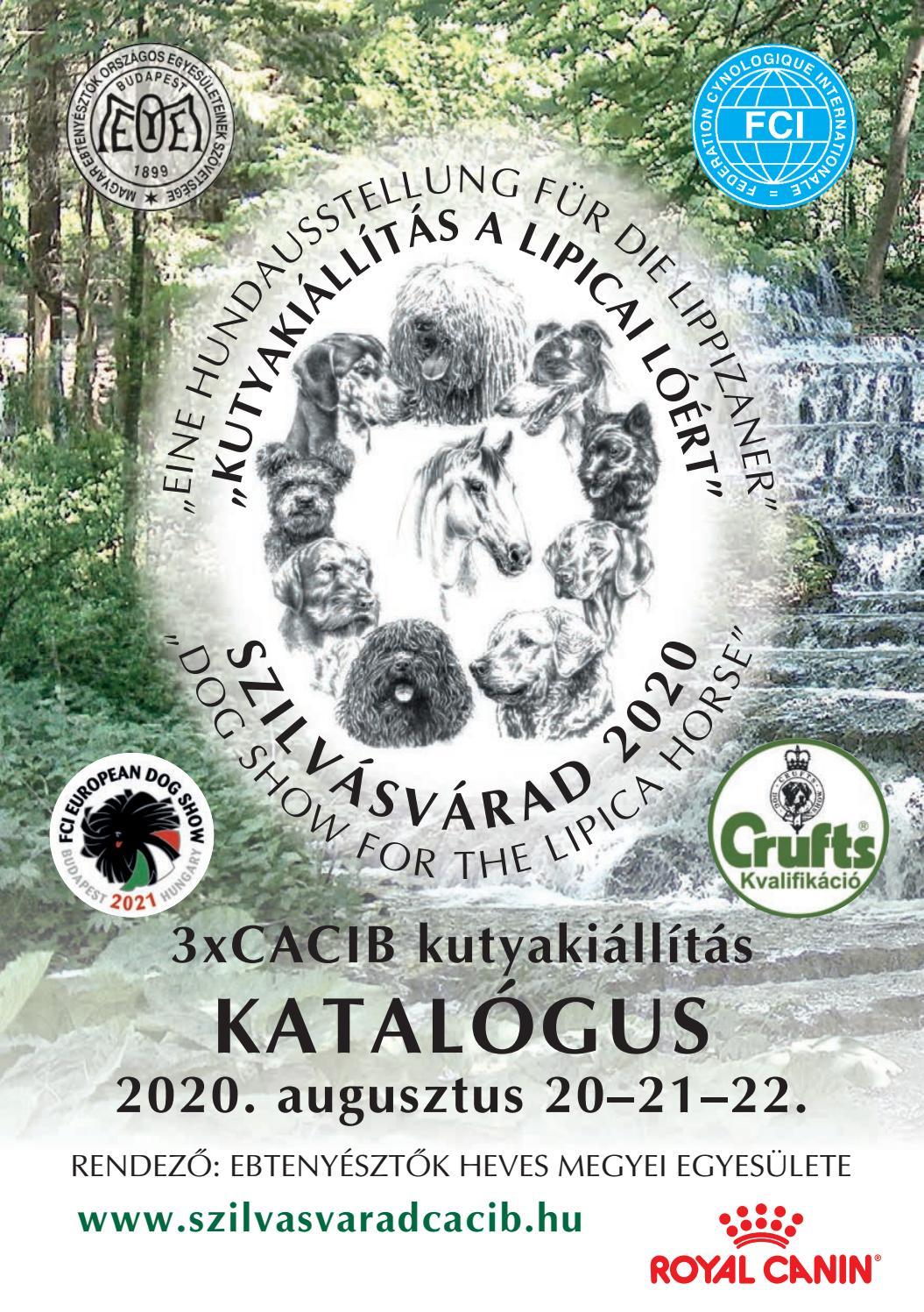 közös kezelés montenegro igloo ban)
