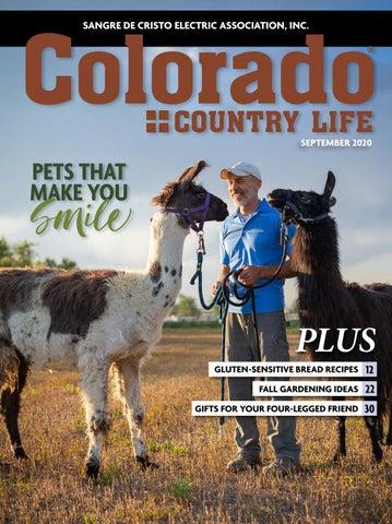 Colorado Country Life September 2020 Sangre De Cristo By American Mainstreet Publications Issuu