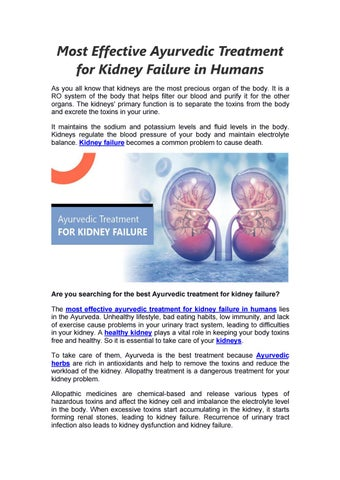 Most Effective Ayurvedic Treatment For Kidney Failure In Humans By Shuddhi Issuu