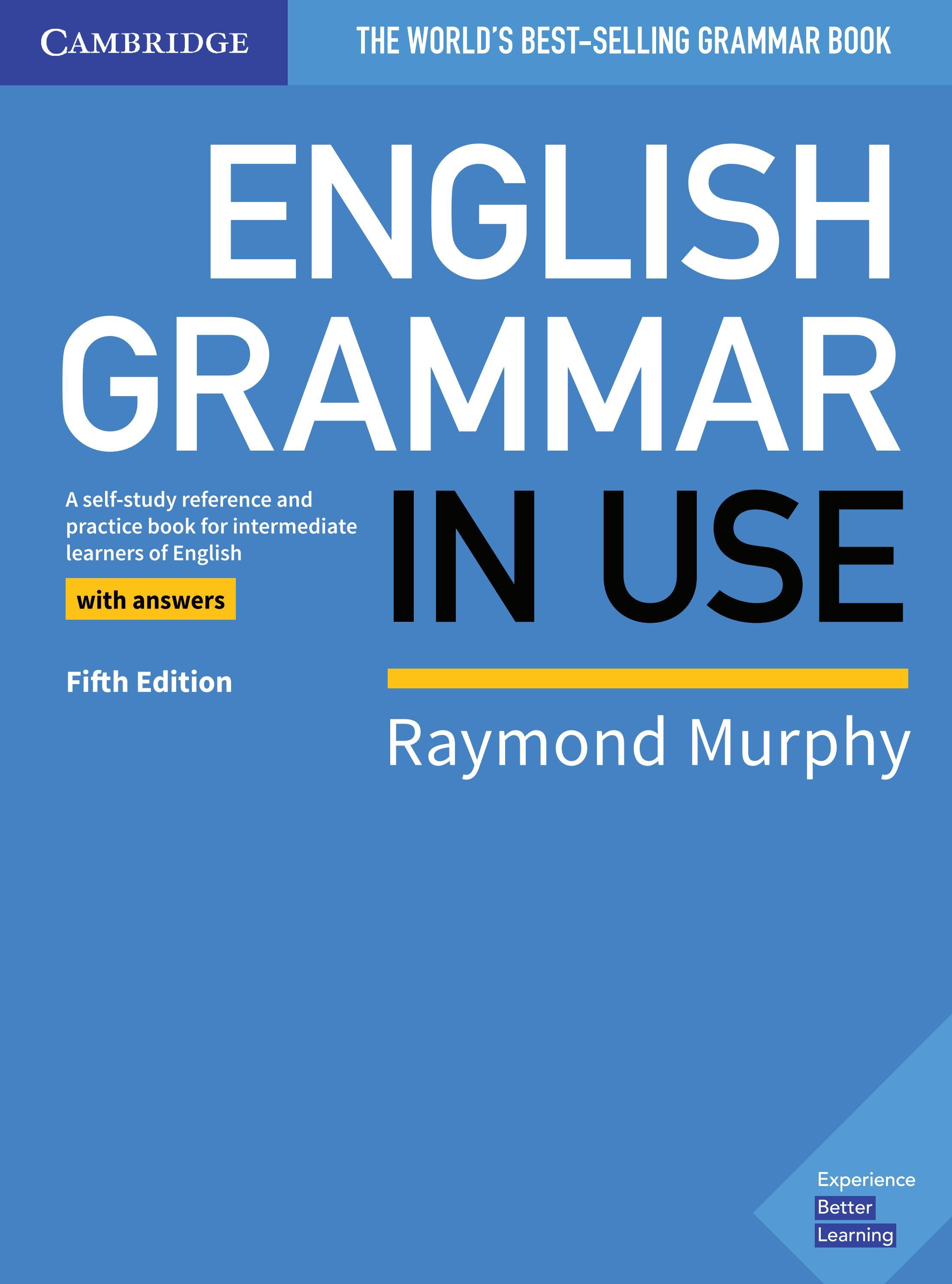 English Grammar In Use By Lina Shejchuk Issuu