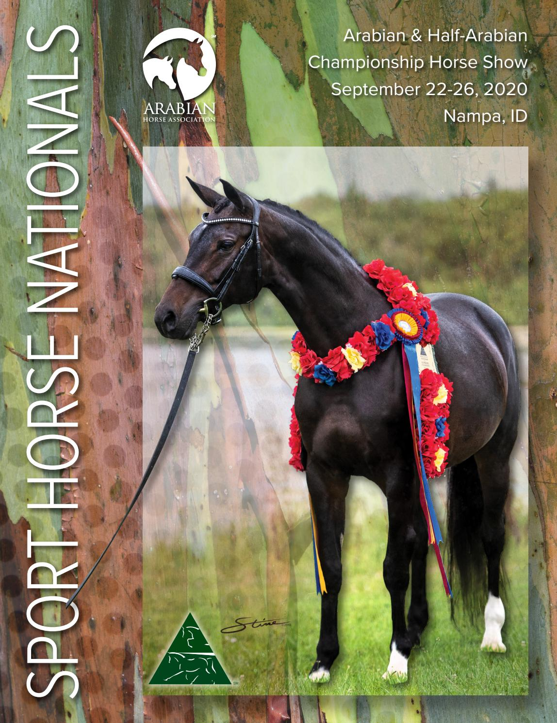 2020 Sport Horse National Arabian Half Arabian Championship Horse Show Program By Arabian Horse Association Issuu