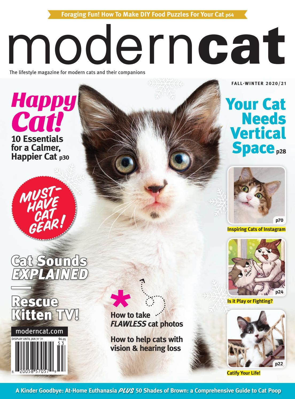 Modern Cat Fall Winter 2020 By Modern Cat Magazine Issuu