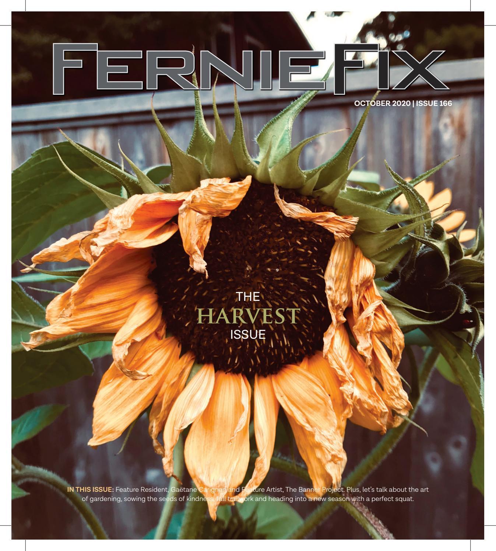 Fernie Fix October 2020 By Claris Media Issuu