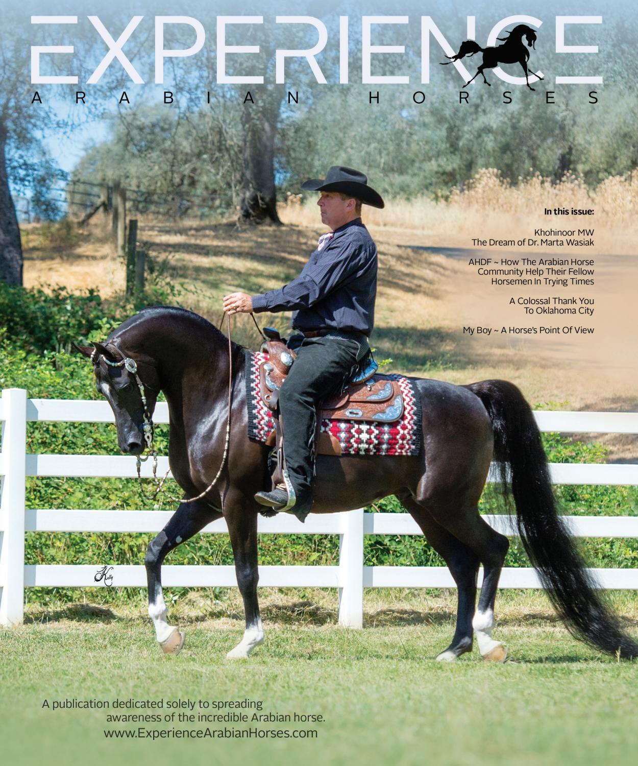 Experience Arabian Horses Issue 10 Published With Arabian Horse Times By Arabian Horse Times Issuu