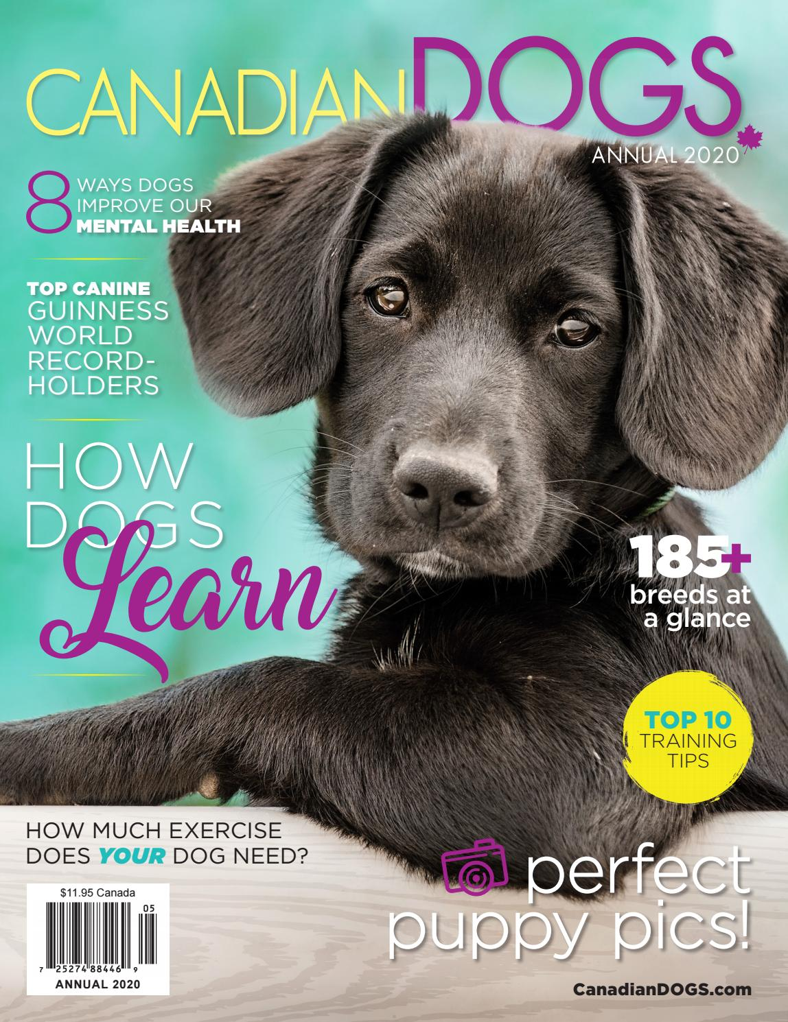 Canadian Dogs Annual 2020 By Redstone Media Group Issuu