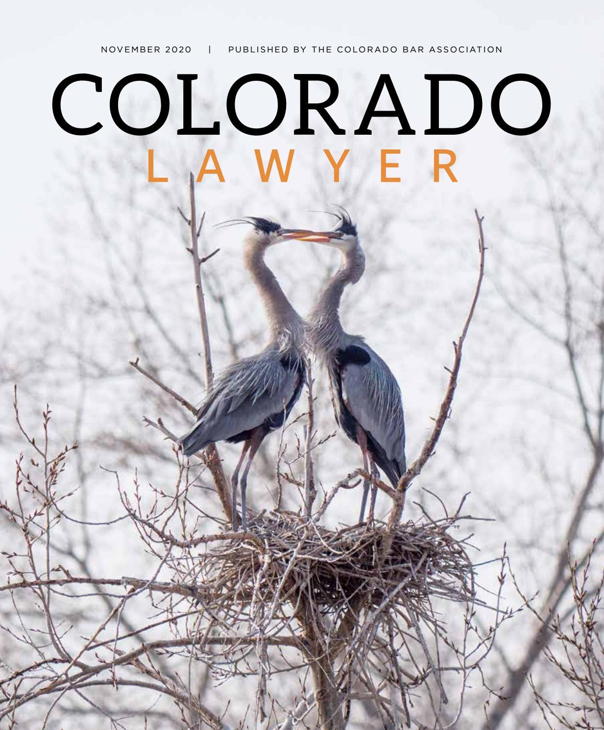 Colorado Lawyer November 2020 By Colorado Lawyer Issuu