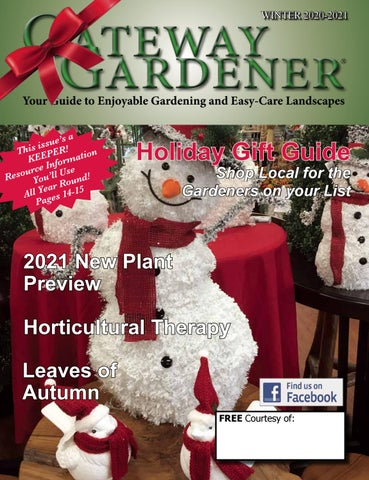 Christmas Things To Do In Webster And Kirkwood Mo 2021 The Gateway Gardener Winter 2020 By The Gateway Gardener Issuu
