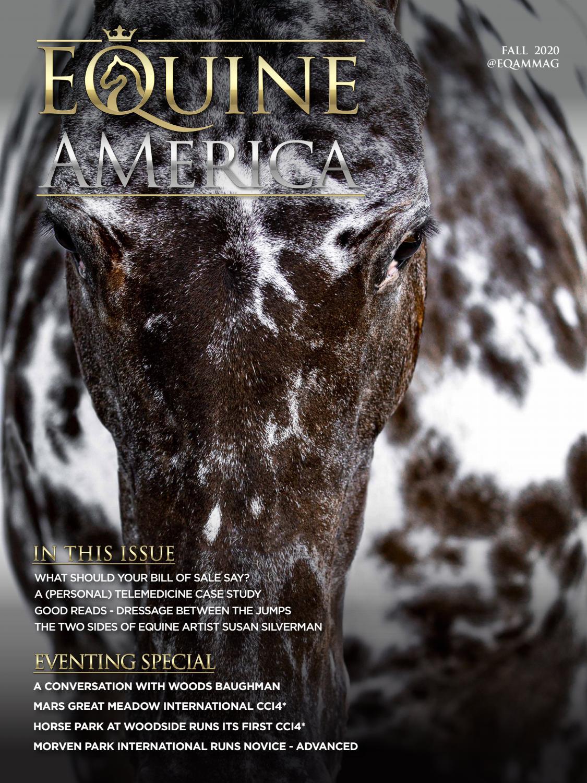 Equine America Fall 2020 By Carina Roselli Issuu