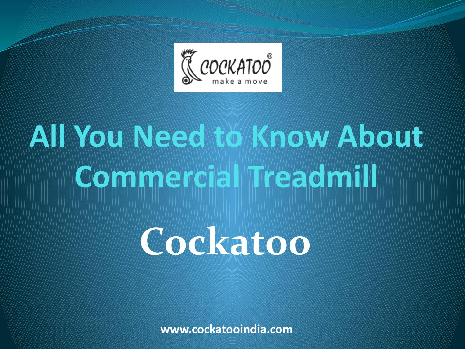 All You Need to Know About Commercial Treadmill