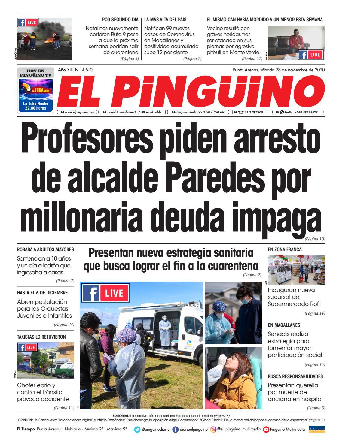 Actor Porno Que Volia Estudisr Meficina 28-11--2020el pinguino - issuu