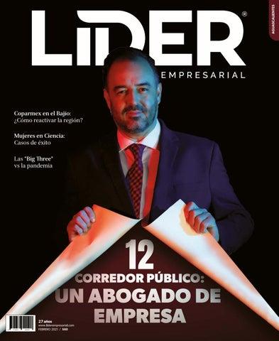 Líder Empresarial No. 313