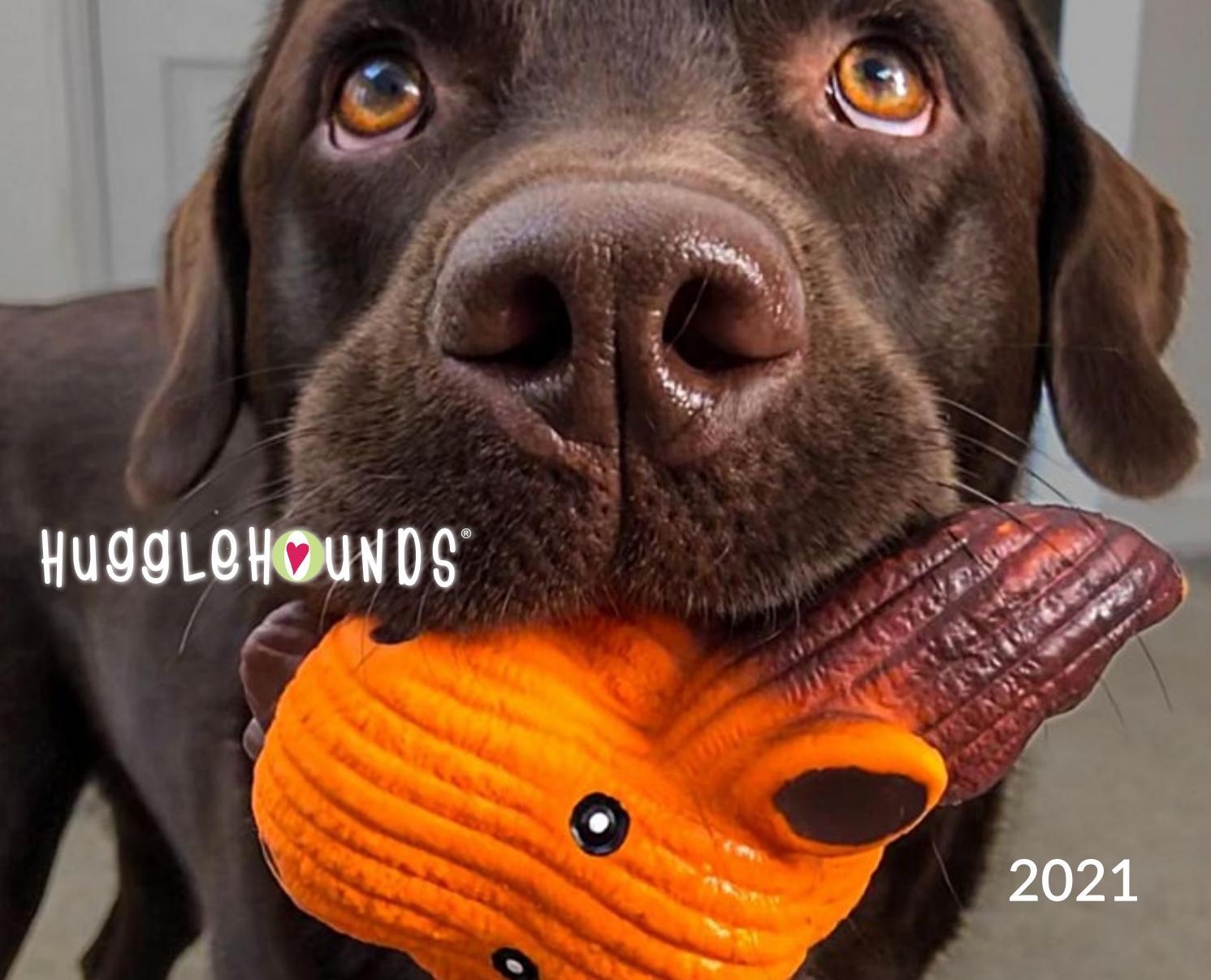 Hugglehounds 2021 By Hugglehounds Issuu
