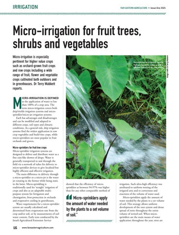 Micro-irrigation for fruit trees, shrubs and vegetables