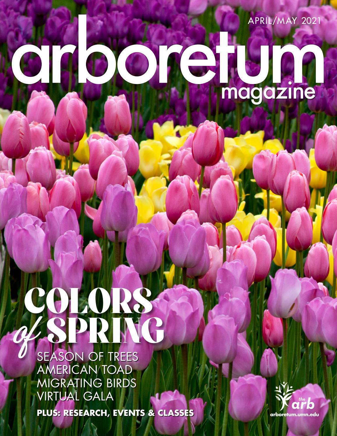 Umn Calendar 2022.Mn Arboretum Magazine Apr May 2021 By Minnesota Landscape Arboretum Issuu