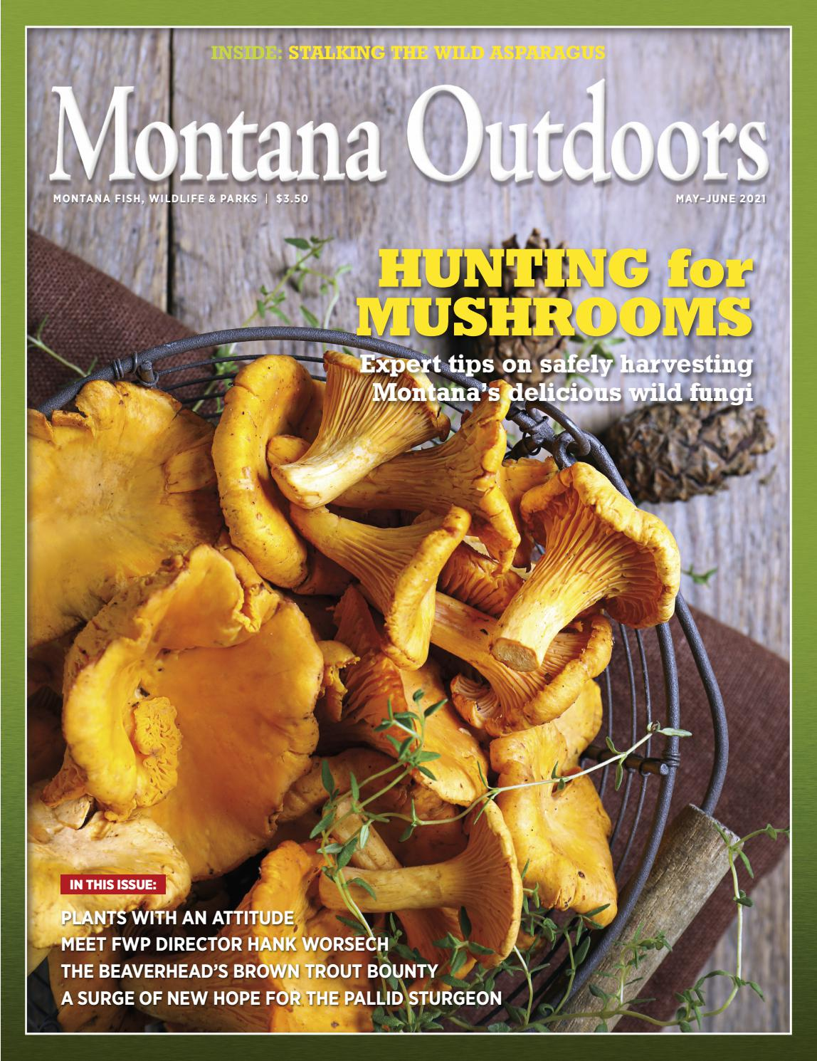 How Widesoread Is The Stomach Flu Over Christmas 2021 In Montana Montana Outdoors Magazine May June 2021 By Montana Outdoors Issuu